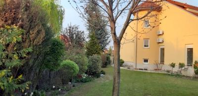 v záhrade