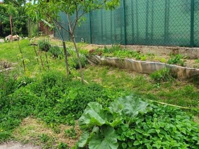 Možnosť pestovania na pozemku