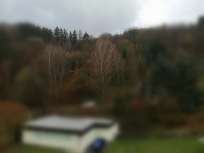 Výhľad z bytu vzadu